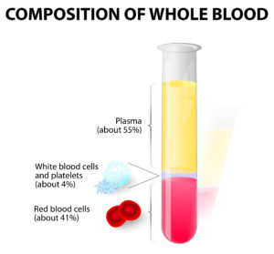 Composition of whole blood. blood plasma and formed elements in test tube. Hematocrit. Red blood cells (erythrocytes), white cells (lymphocyte) and platelets (thrombocytes)